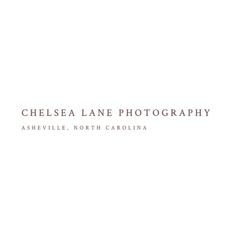 Chelsea Lane Photography, Asheville, NC -- The Quirky Pineapple Studio portfolio page